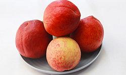 夏天吃什么水果好